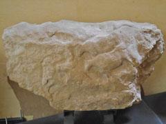 museo preistorico pietra