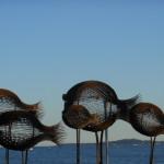 pesci Antibes